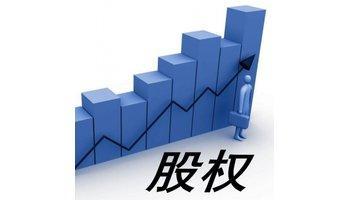 有限责任公司股权转让的主要形式与限制条件