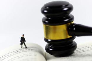 公司高管刑事法律风险防控